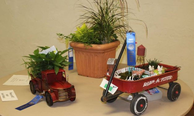 Changes Made to This Year's Home & Garden Show