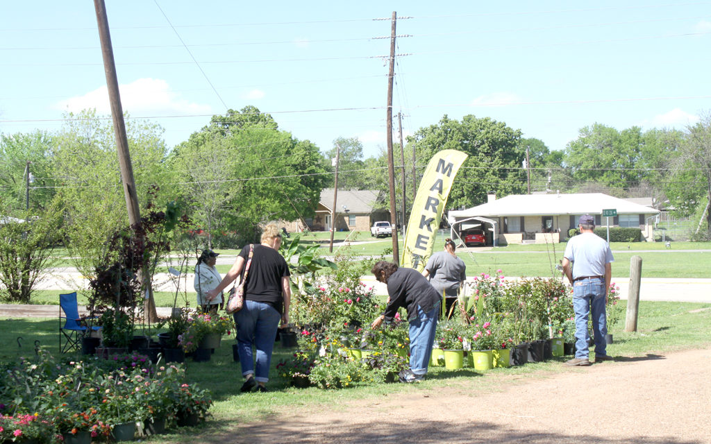 Fairfield Market Days This Weekend – Flower Garden & Herb Fest