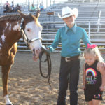 2017 Horse Halter Project Show