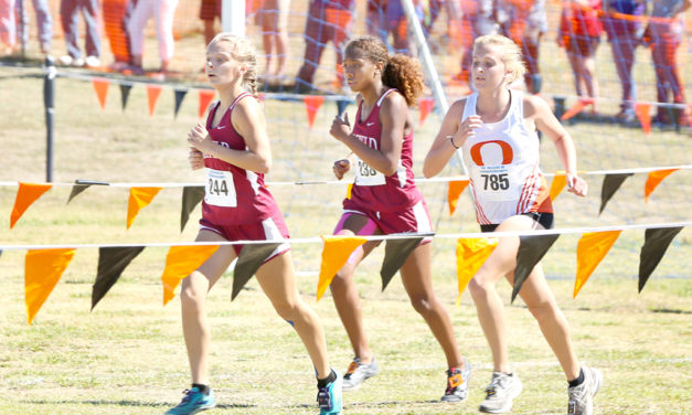 Lady Eagles Advance to State in Cross Country Competition