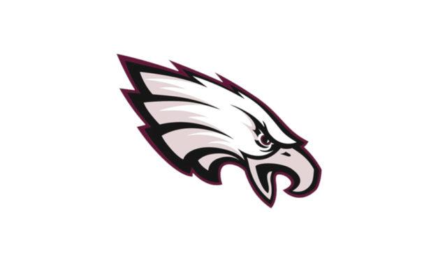 Lady Eagles Season Ends at Area