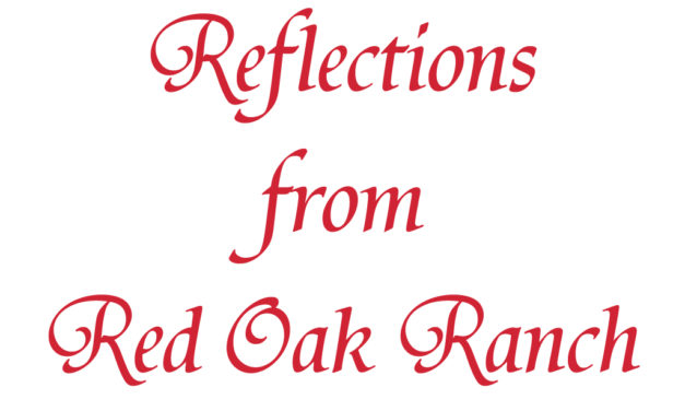 Reflections from Red Oak Ranch – Jan. 17th